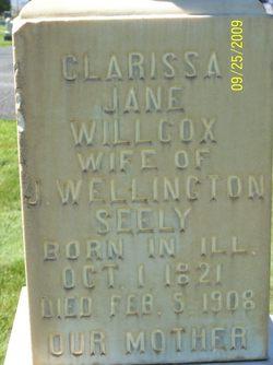Clarissa Jane <I>Wilcox</I> Seely