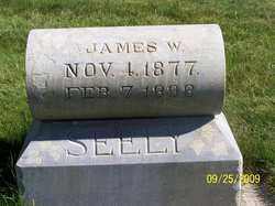James W Seely