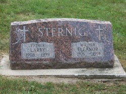 Eleanor Minnie <I>Henke</I> Sternig
