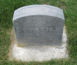 Harriet Lucinda <I>Whiting</I> Curtis