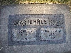 John Harry Whale