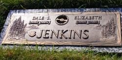 Dr Dale Stevens Jenkins