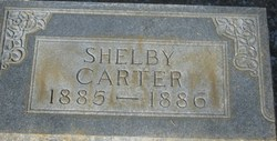 Shelby Carter