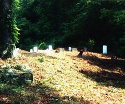 Adkins-Brumfield Cemetery