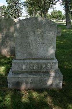 Henry N. Higgins
