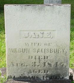 Jane <I>Storms</I> Salisbury
