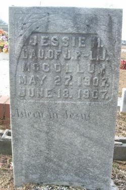 Jesse M McCollum