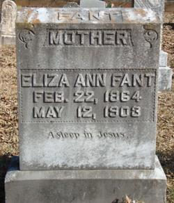 Eliza Ann <I>McAbee</I> Fant