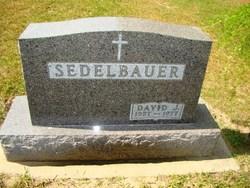 David John Sedelbauer