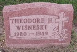 Theodore H Wisneski
