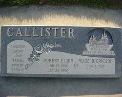 Robert Elwin Callister