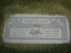 Wanda LaNae <I>Curtis</I> Anderson