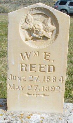 William Ezra Reed