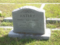 Nettie Edna <I>Waltz</I> Antley