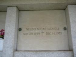 Neldo N Castagnoli
