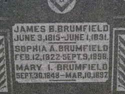 Sophia Ann <I>Rogers</I> Brumfield