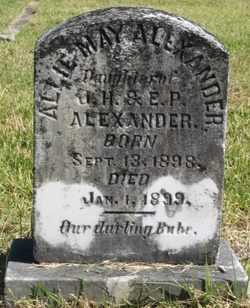 Allie May Alexander