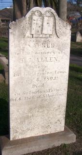 Thomas J Allen