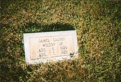 James Calvin Wilson, Jr