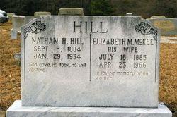 "Elizabeth Matilda ""Lizzie"" <I>McKee</I> Hill"