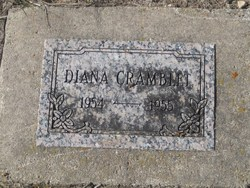 Diana Lynn Cramblet