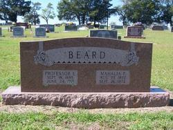 Professor Ernest Beard