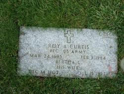 Roy A Curtis