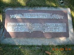 Susan Eliza <I>Christiansen</I> Horlacher