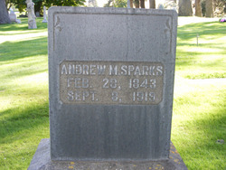 Andrew M Sparks