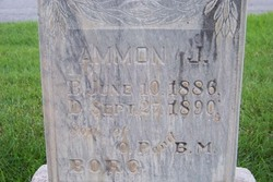 Ammon J Borg