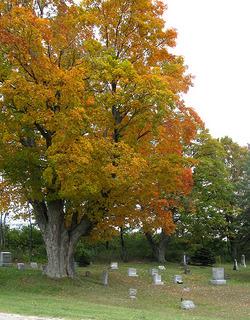 East Leland Cemetery