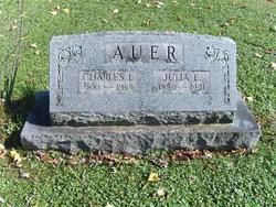 Julia Ellen <I>Dunn</I> Auer