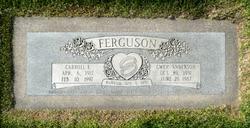 Gwen <I>Anderson</I> Ferguson