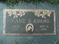 Diane S <I>Morrisey</I> Adams