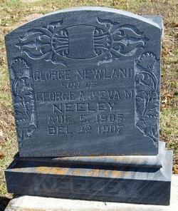 George Newland Neeley