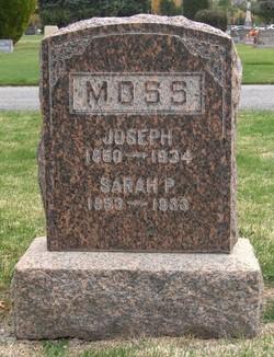 Sarah Phoebe <I>Sessions</I> Moss
