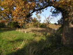 Dibler Cemetery