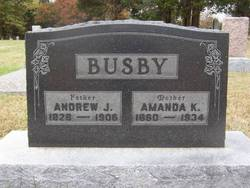 Dr Andrew Jackson Busby
