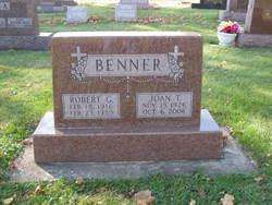 Robert G Benner