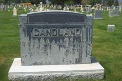 William David Candland