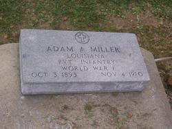 Adam A Miller