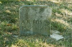 Albert Newton Foster
