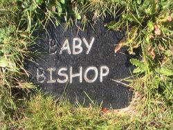 (Baby) Bishop