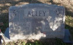 Cerillar C. <I>Blackwell</I> Alley