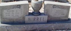 Aurilla <I>Driggers</I> Birrel