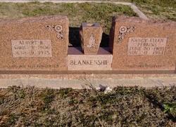 Nancy Ellen <I>Perkins</I> Blankenship
