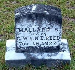 Mallard B. Reed