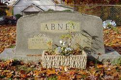 Robert T Abney