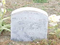 David S Love