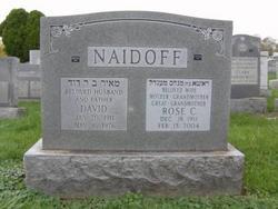 Dr David Naidoff
